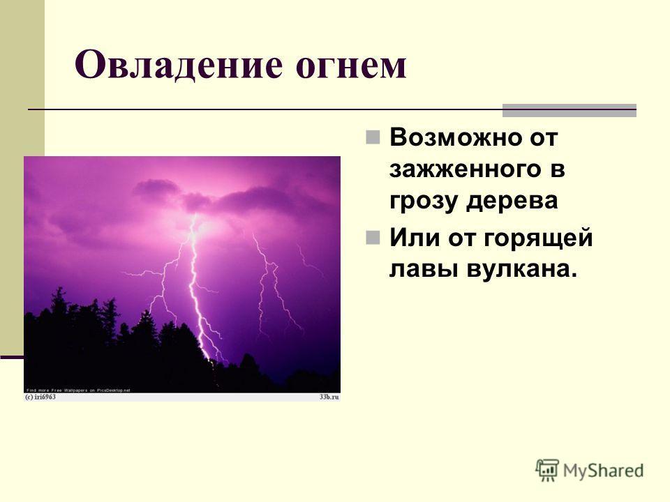 Овладение огнем Возможно от зажженного в грозу дерева Или от горящей лавы вулкана.