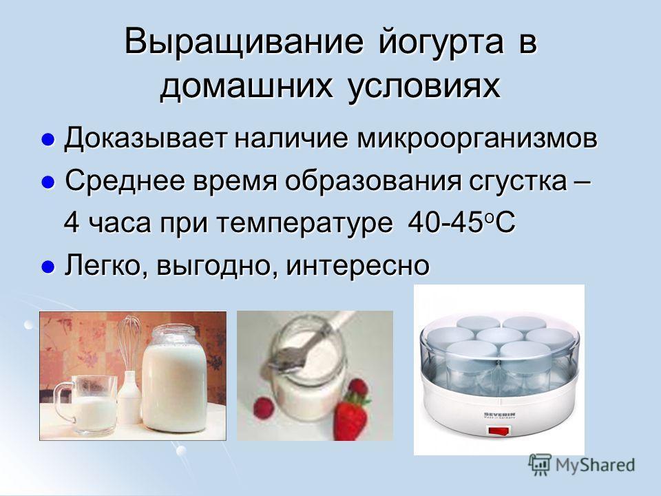 Выращивание йогурта в домашних условиях Доказывает наличие микроорганизмов Доказывает наличие микроорганизмов Среднее время образования сгустка – Среднее время образования сгустка – 4 часа при температуре 40-45 о С 4 часа при температуре 40-45 о С Ле