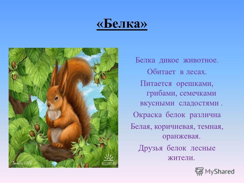 Отгадай ! Не мышь, не птица В лесу резвится На деревьях живёт И орешки грызёт.