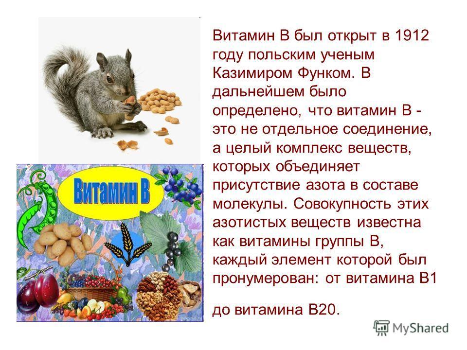 Витамин B был открыт в 1912 году польским ученым Казимиром Функом. В дальнейшем было определено, что витамин B - это не отдельное соединение, а целый комплекс веществ, которых объединяет присутствие азота в составе молекулы. Совокупность этих азотист