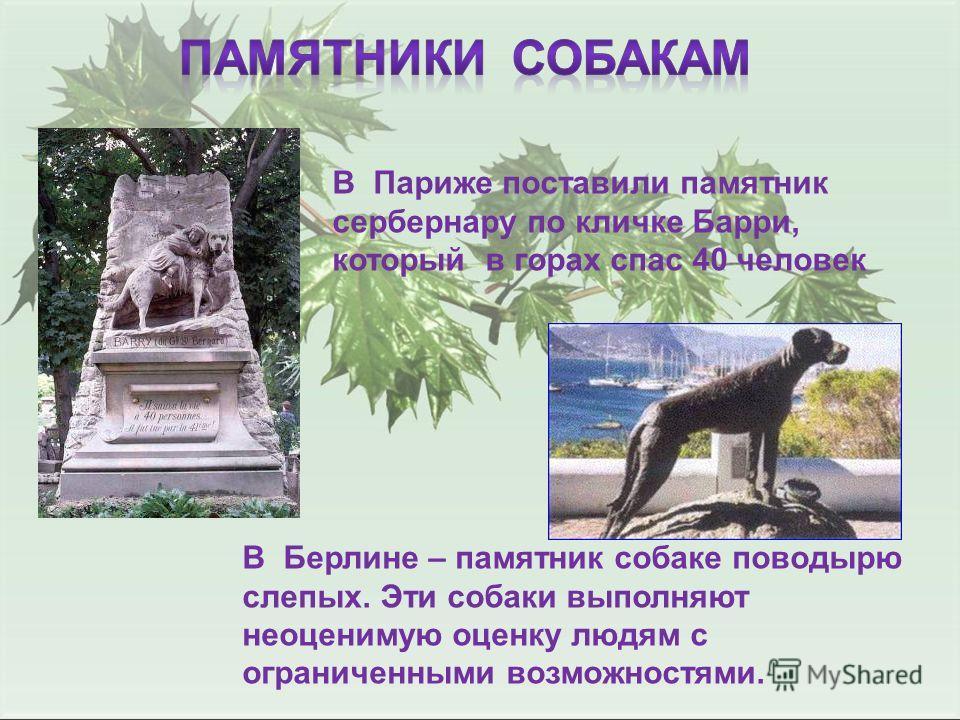 В Париже поставили памятник сербернару по кличке Барри, который в горах спас 40 человек В Берлине – памятник собаке поводырю слепых. Эти собаки выполняют неоценимую оценку людям с ограниченными возможностями.