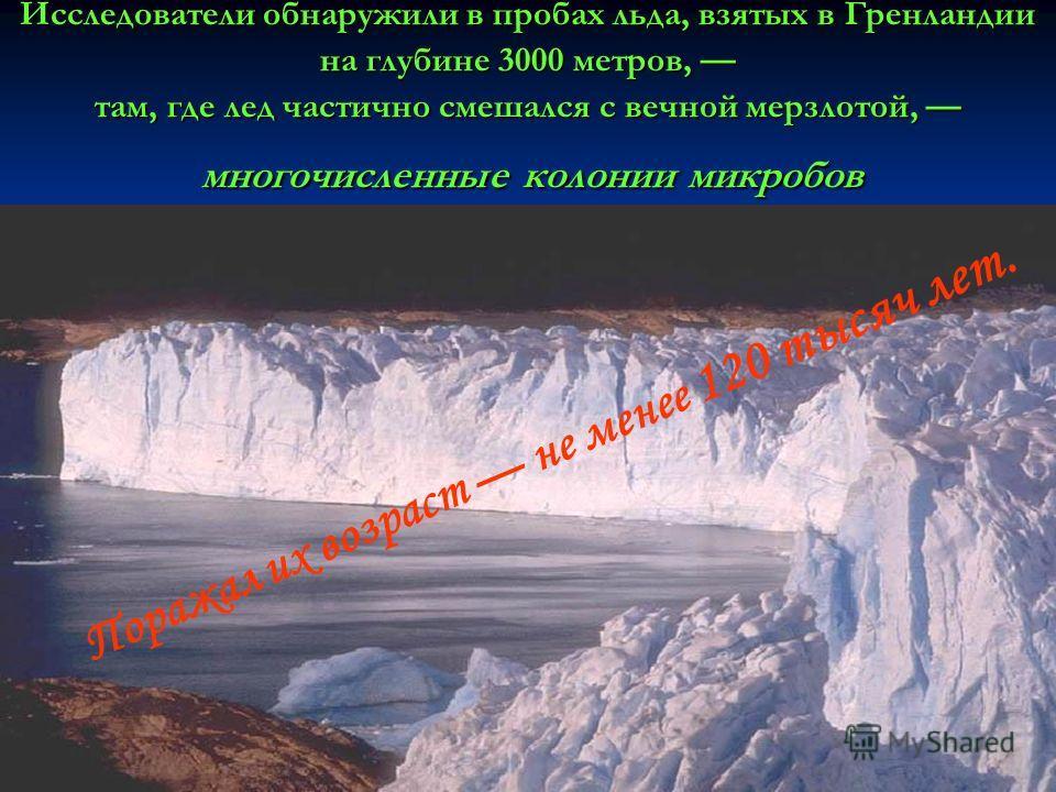 Исследователи обнаружили в пробах льда, взятых в Гренландии на глубине 3000 метров, там, где лед частично смешался с вечной мерзлотой, многочисленные колонии микробов Поражал их возраст не менее 120 тысяч лет.