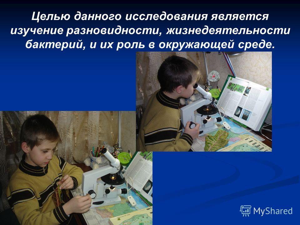 Целью данного исследования является изучение разновидности, жизнедеятельности бактерий, и их роль в окружающей среде.