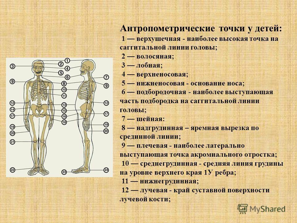 Антропометрические точки у детей: 1 верхушечная - наиболее высокая точка на саггитальной линии головы; 2 волосяная; 3 лобная; 4 верхненосовая; 5 нижненосовая - основание носа; 6 подбородочная - наиболее выступающая часть подбородка на саггитальной ли