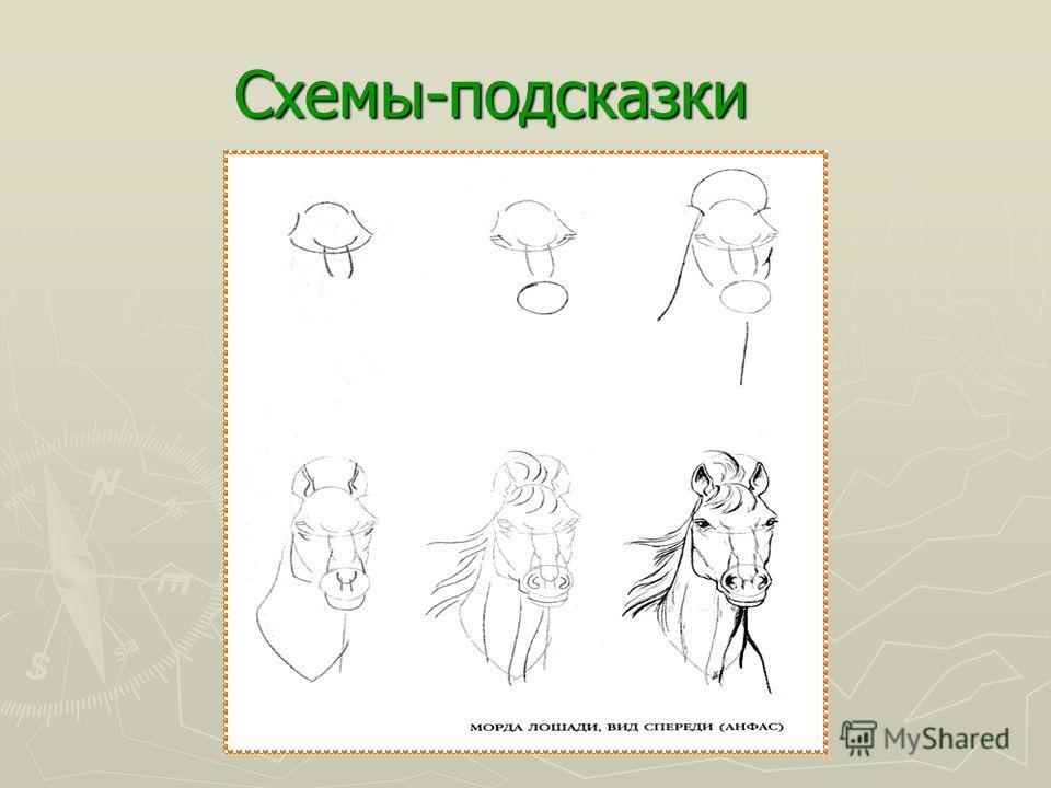 Учимся рисовать лошадей Шаг 3 Контуры готовы, начинаем добавлять детали. Все начинает приобретать форму: раздуем ноздри, уши направим вперёд. Лошадь выглядит оживленной и заинтересованной. Шаг 4 Добавим лошади блик на морде (белая область). Это прида