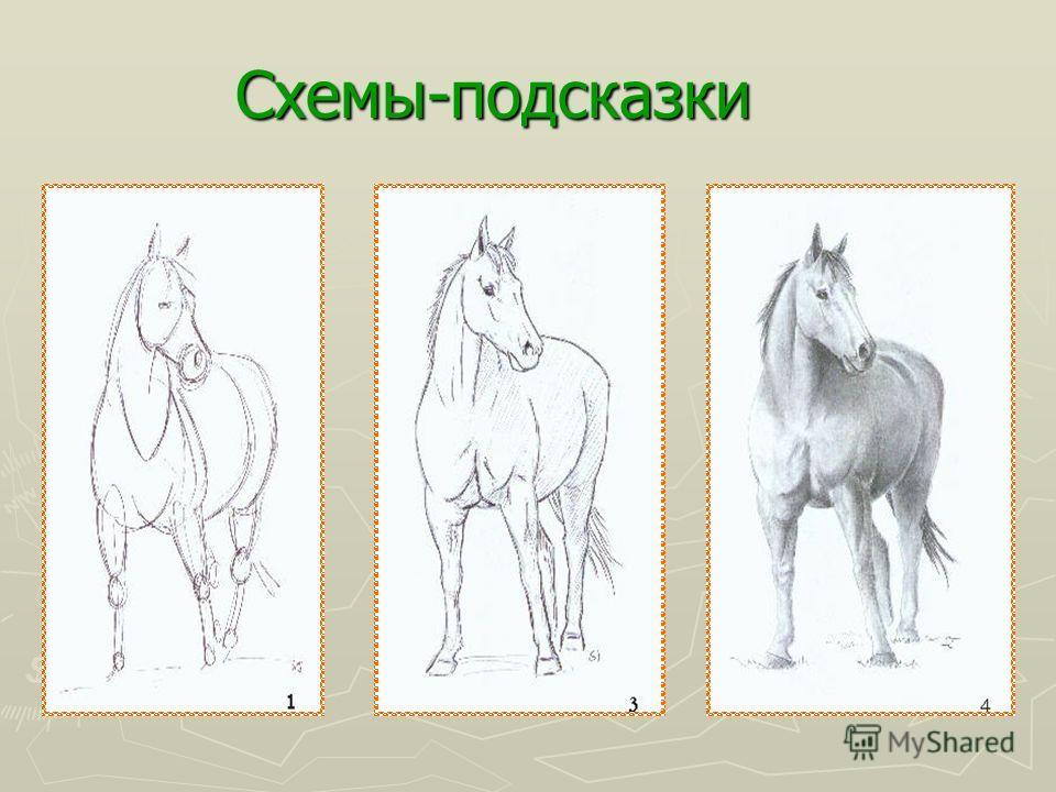 Учимся рисовать лошадей Шаг 2 Чем меньше мы работаете над эскизом, тем хуже обозначен характер лошади. Начинаем прорисовывать мускулы и выражение морды лошади, добавляем волосы. Шаг 3 Обозначаем источник света и слегка играем с тенью. Очищаем все лин