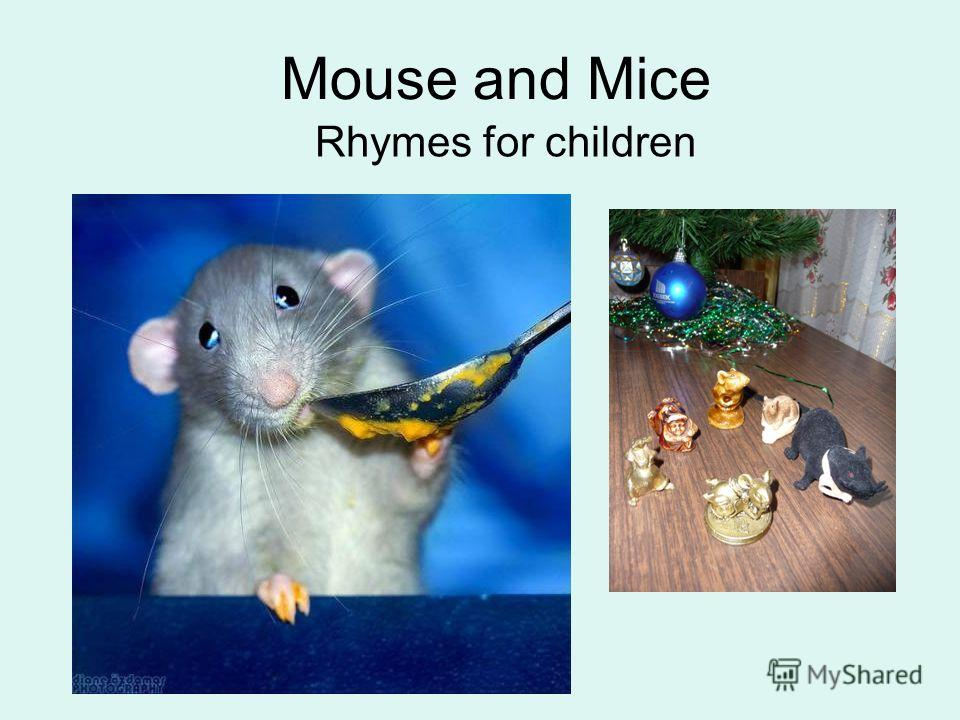 Mouse and Mice Rhymes for children