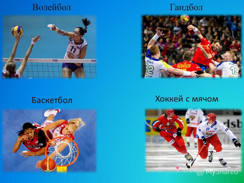 Волейбол Баскетбол Гандбол Хоккей с мячом