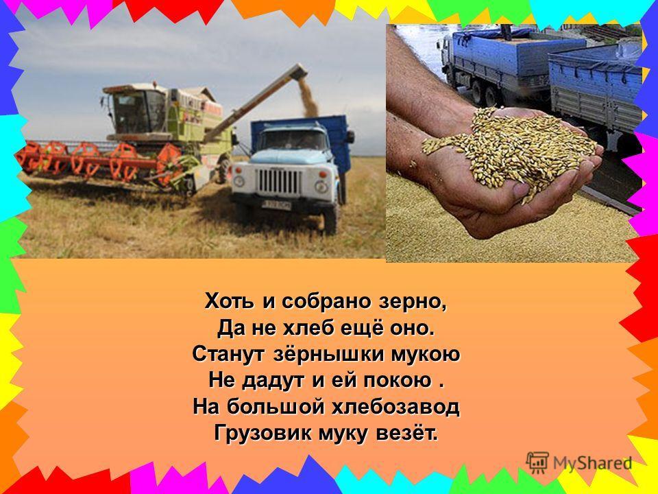 Хоть и собрано зерно, Да не хлеб ещё оно. Станут зёрнышки мукою Не дадут и ей покою. На большой хлебозавод Грузовик муку везёт.