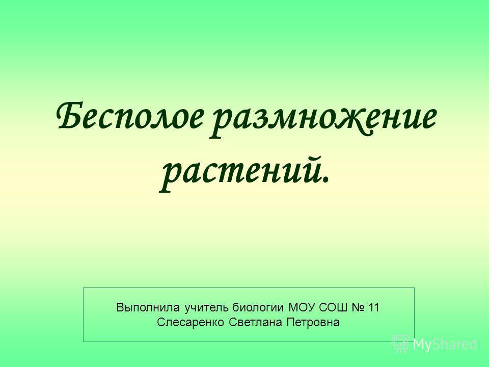 Бесполое размножение растений. Выполнила учитель биологии МОУ СОШ 11 Слесаренко Светлана Петровна
