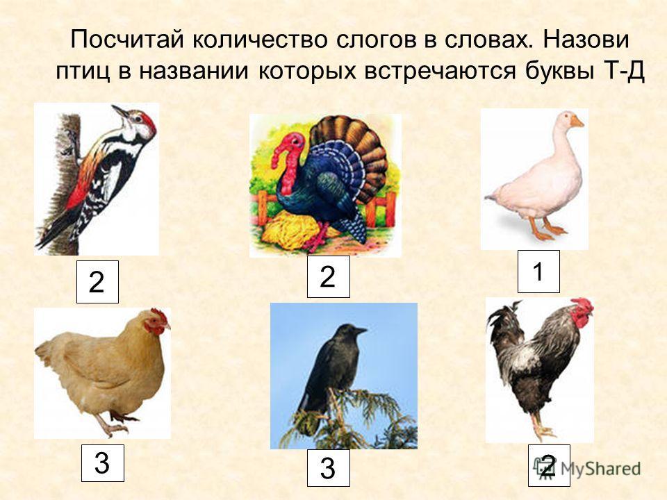 Посчитай количество слогов в словах. Назови птиц в названии которых встречаются буквы Т-Д 2 2 1 3 3 2