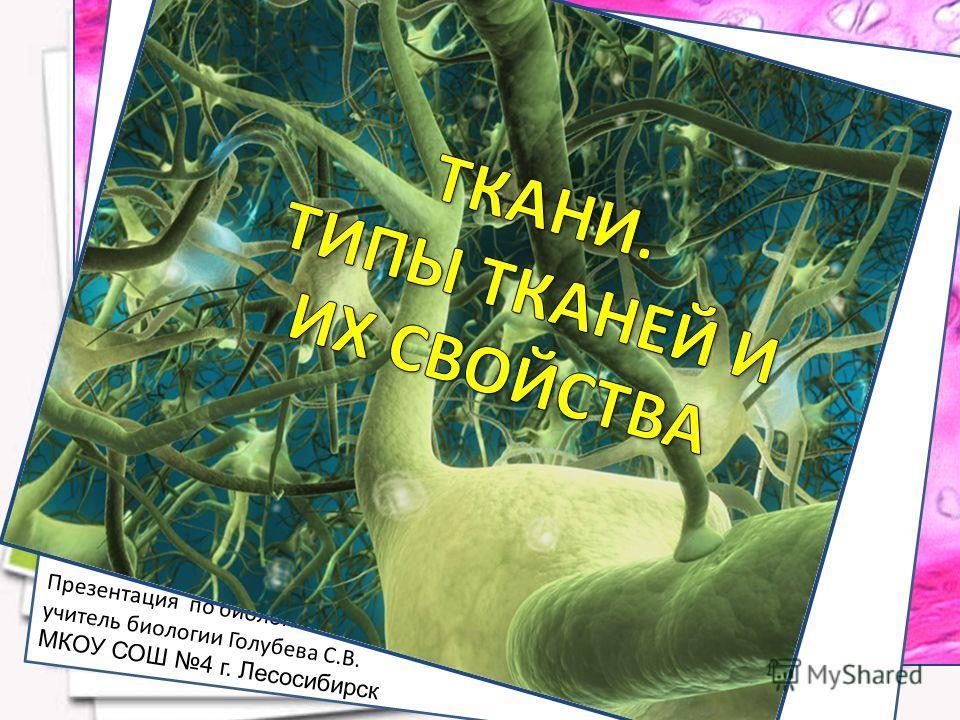 Презентация по биологии учитель биологии Голубева С.В. МКОУ СОШ 4 г. Лесосибирск