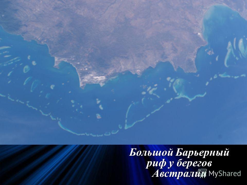 Большой Барьерный риф у берегов Австралии