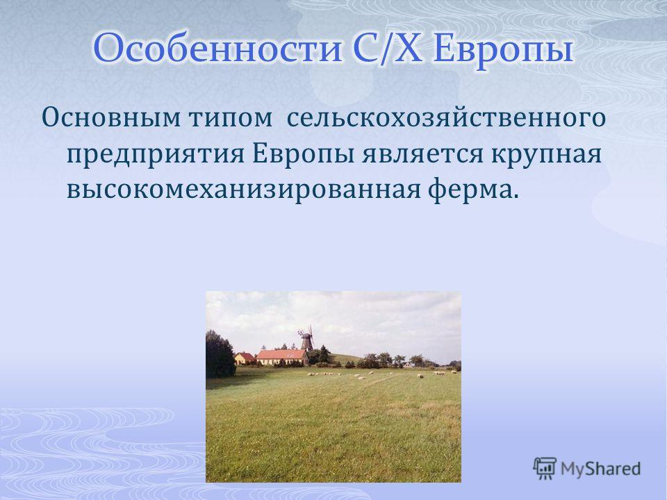 Основным типом сельскохозяйственного предприятия Европы является крупная высокомеханизированная ферма.