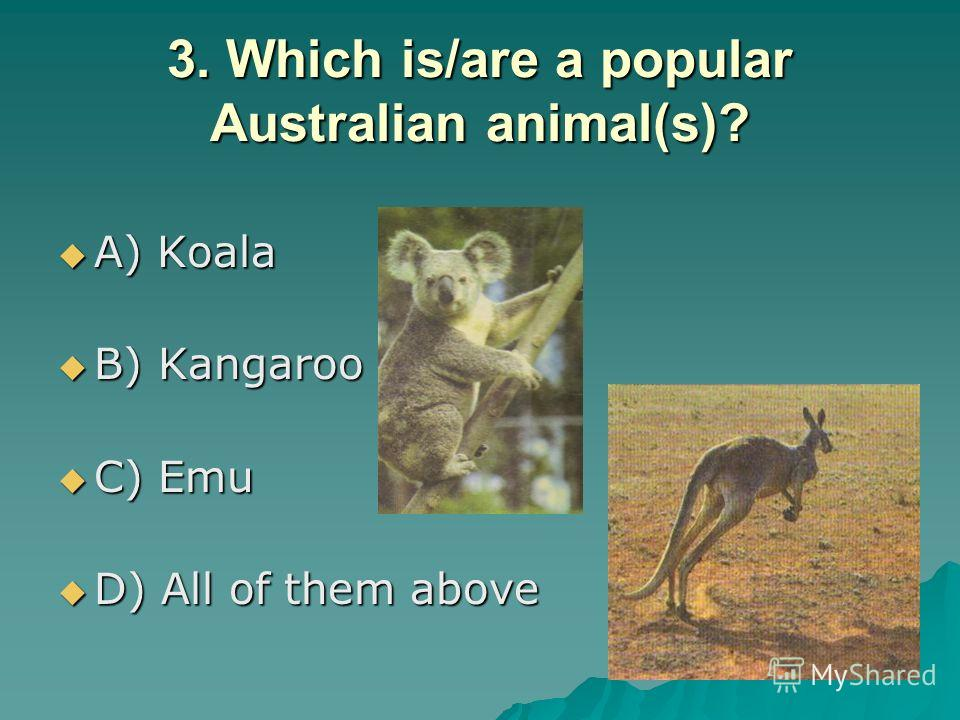 3. Which is/are a popular Australian animal(s)? A) Koala A) Koala B) Kangaroo B) Kangaroo C) Emu C) Emu D) All of them above D) All of them above