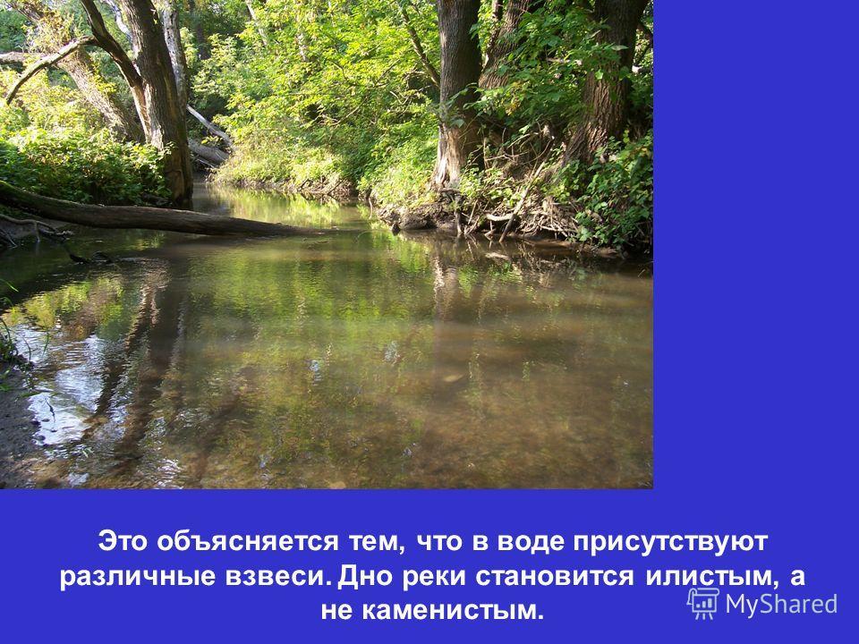 Это объясняется тем, что в воде присутствуют различные взвеси. Дно реки становится илистым, а не каменистым.