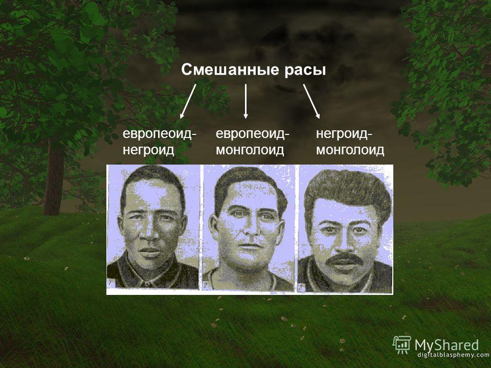 Смешанные расы европеоид- негроид европеоид- монголоид негроид- монголоид