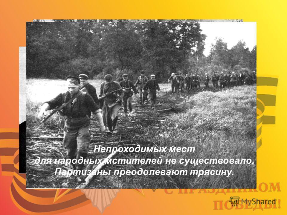 Неуловимый мститель Володя Казначеев В партизанском дозоре Непроходимых мест для народных мстителей не существовало. Партизаны преодолевают трясину.