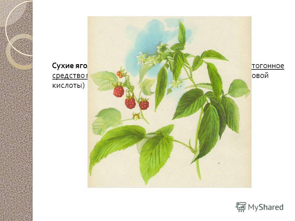 Малина обыкновенная Сухие ягоды и веточки заваривают и используют как потогонное средство при простудных заболеваниях ( много салициловой кислоты )