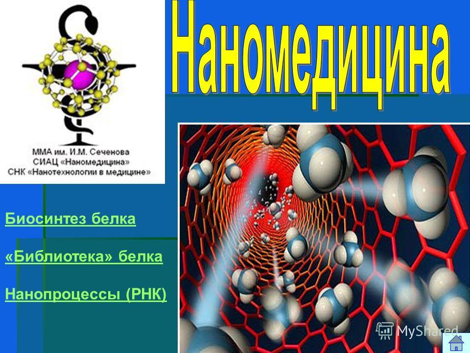 Биосинтез белка «Библиотека» белка Нанопроцессы (РНК)