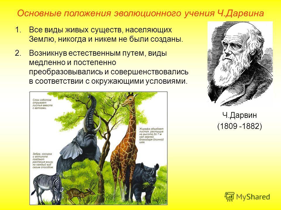 Основные положения эволюционного учения Ч.Дарвина Ч.Дарвин (1809 -1882) 1.Все виды живых существ, населяющих Землю, никогда и никем не были созданы. 2.Возникнув естественным путем, виды медленно и постепенно преобразовывались и совершенствовались в с