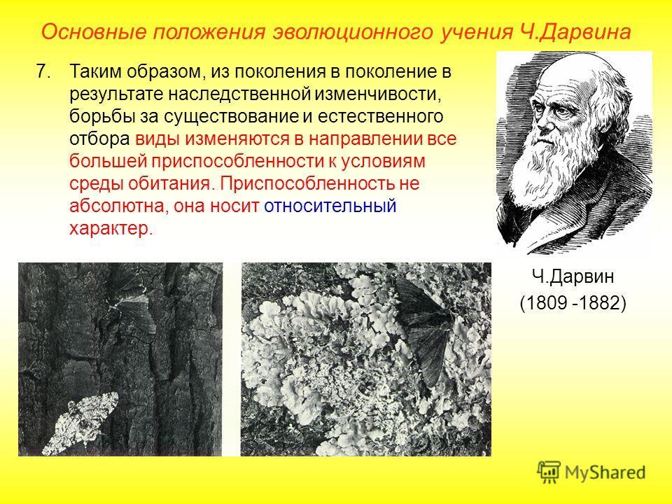Основные положения эволюционного учения Ч.Дарвина Ч.Дарвин (1809 -1882) 7.Таким образом, из поколения в поколение в результате наследственной изменчивости, борьбы за существование и естественного отбора виды изменяются в направлении все большей присп