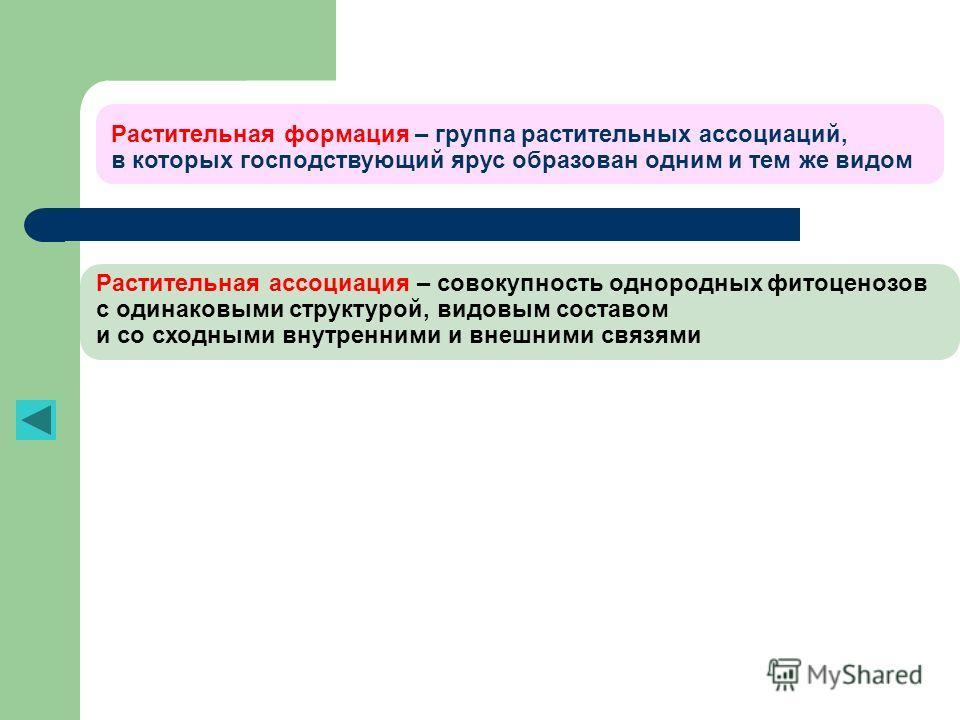 Растительная формация – группа растительных ассоциаций, в которых господствующий ярус образован одним и тем же видом Растительная ассоциация – совокупность однородных фитоценозов с одинаковыми структурой, видовым составом и со сходными внутренними и