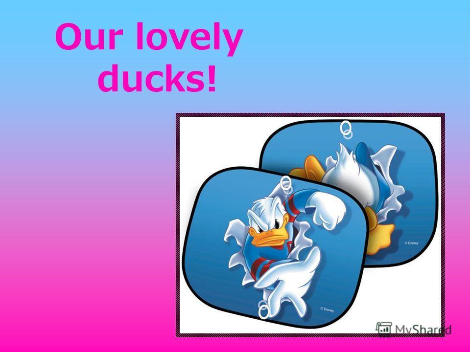 Our lovely ducks!