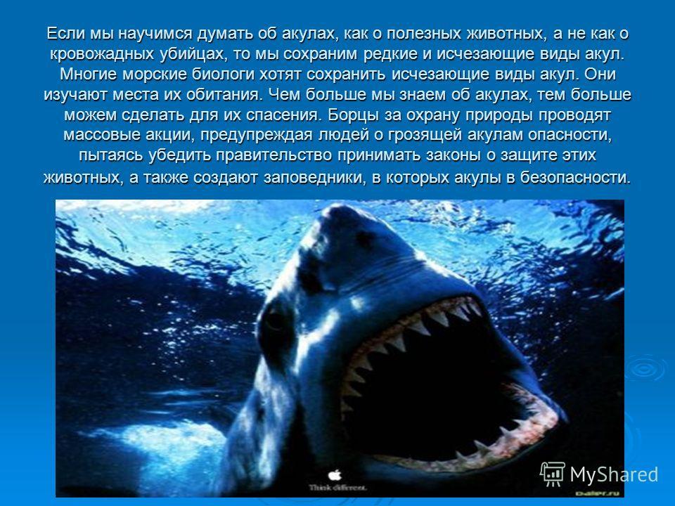 Если мы научимся думать об акулах, как о полезных животных, а не как о кровожадных убийцах, то мы сохраним редкие и исчезающие виды акул. Многие морские биологи хотят сохранить исчезающие виды акул. Они изучают места их обитания. Чем больше мы знаем