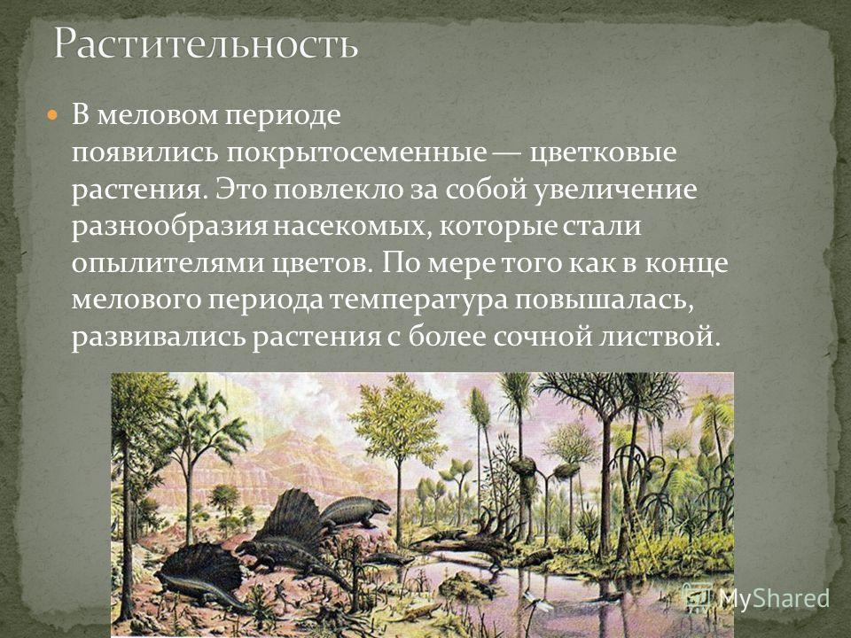 В меловом периоде появились покрытосеменные цветковые растения. Это повлекло за собой увеличение разнообразия насекомых, которые стали опылителями цветов. По мере того как в конце мелового периода температура повышалась, развивались растения с более