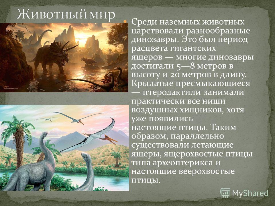 Среди наземных животных царствовали разнообразные динозавры. Это был период расцвета гигантских ящеров многие динозавры достигали 58 метров в высоту и 20 метров в длину. Крылатые пресмыкающиеся птеродактили занимали практически все ниши воздушных хищ