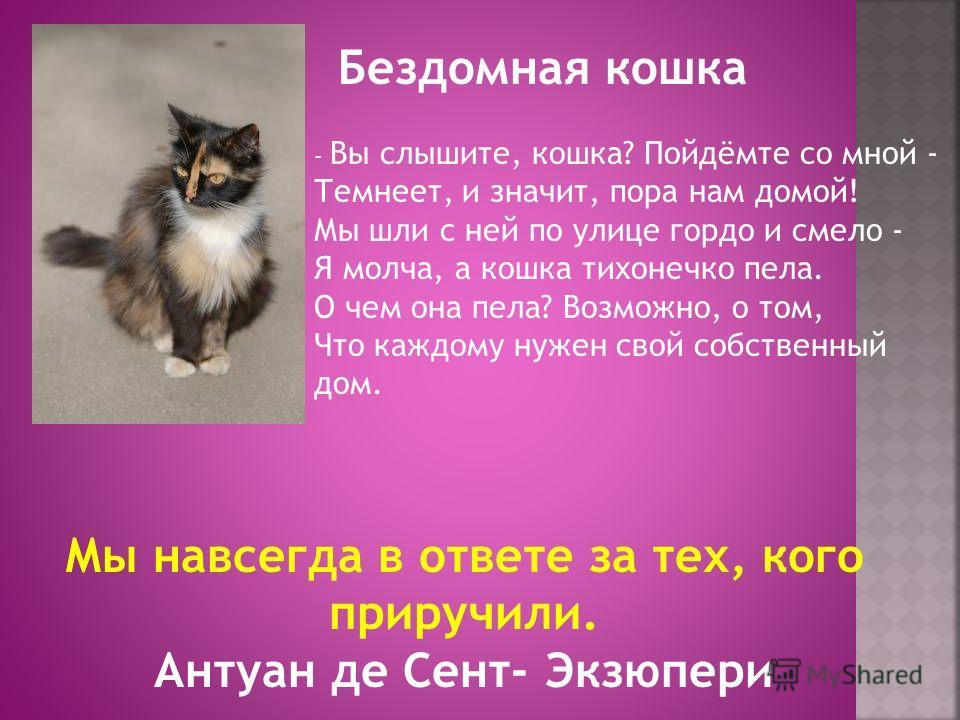 Бездомная кошка - Вы слышите, кошка? Пойдёмте со мной - Темнеет, и значит, пора нам домой! Мы шли с ней по улице гордо и смело - Я молча, а кошка тихонечко пела. О чем она пела? Возможно, о том, Что каждому нужен свой собственный дом. Мы навсегда в о
