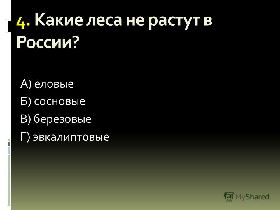 4. Какие леса не растут в России? А) еловые Б) сосновые В) березовые Г) эвкалиптовые