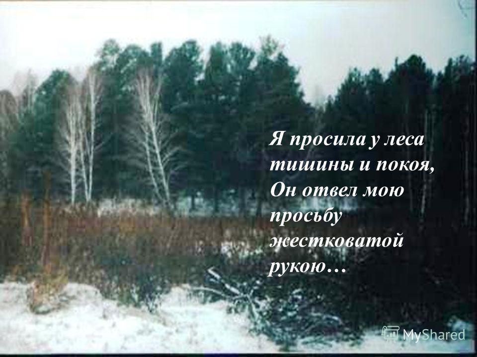 Я просила у леса Тишины и покоя,- Он отвел мою просьбу Жестковатой рукою. Я просила у леса тишины и покоя, Он отвел мою просьбу жестковатой рукою…