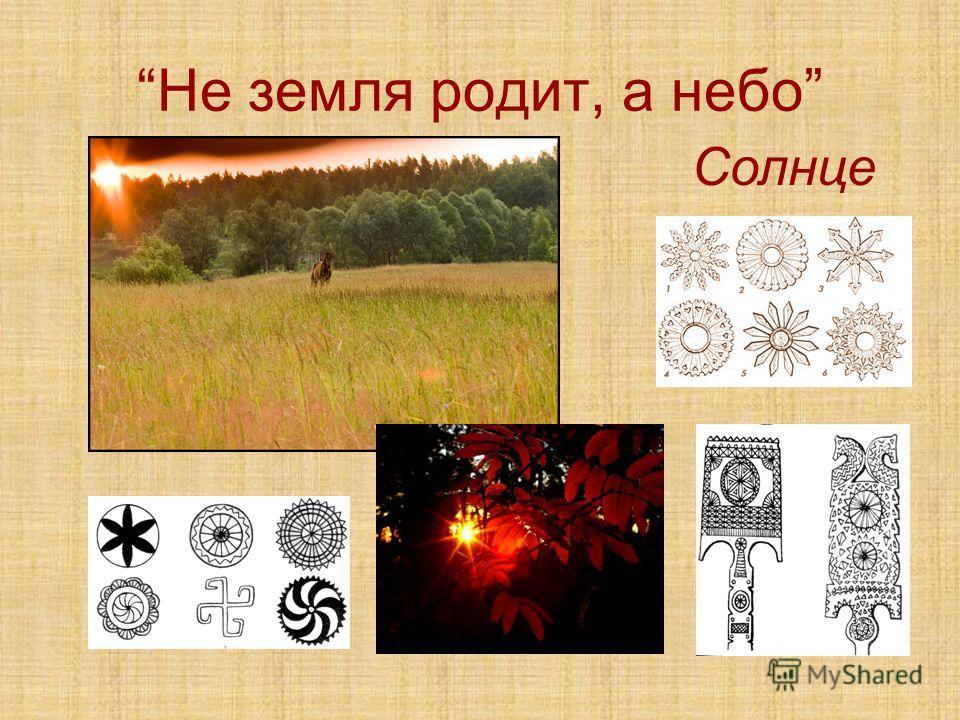 Не земля родит, а небо Солнце
