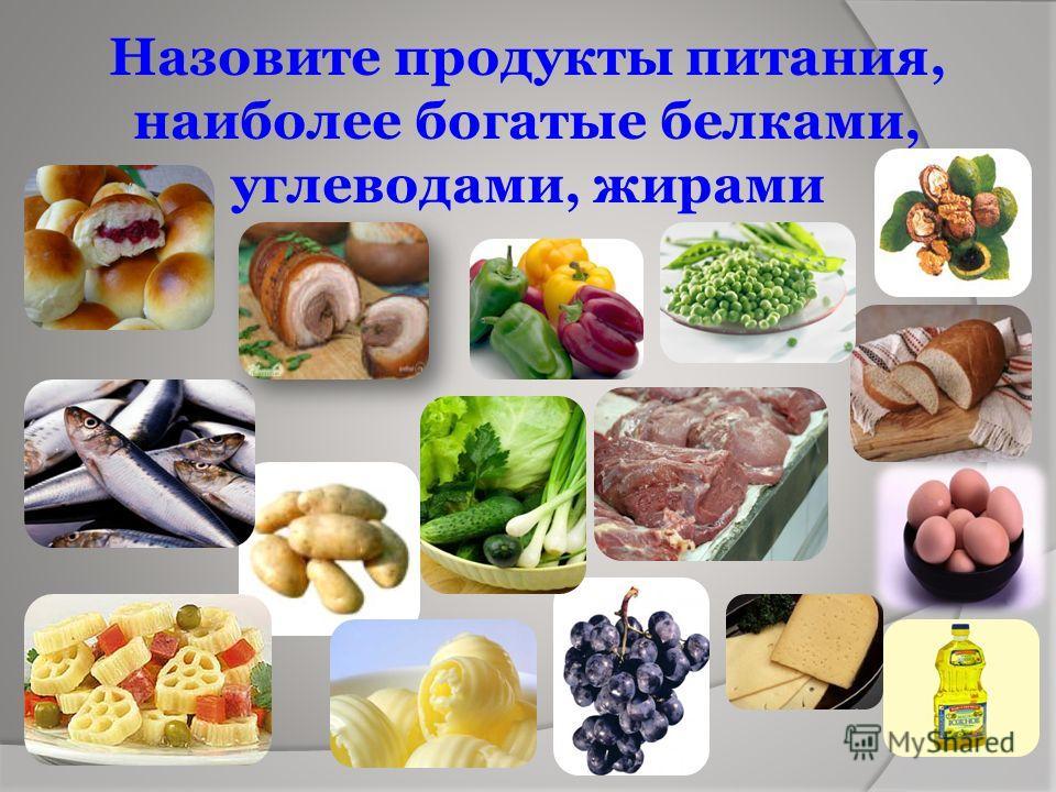 Назовите продукты питания, наиболее богатые белками, углеводами, жирами