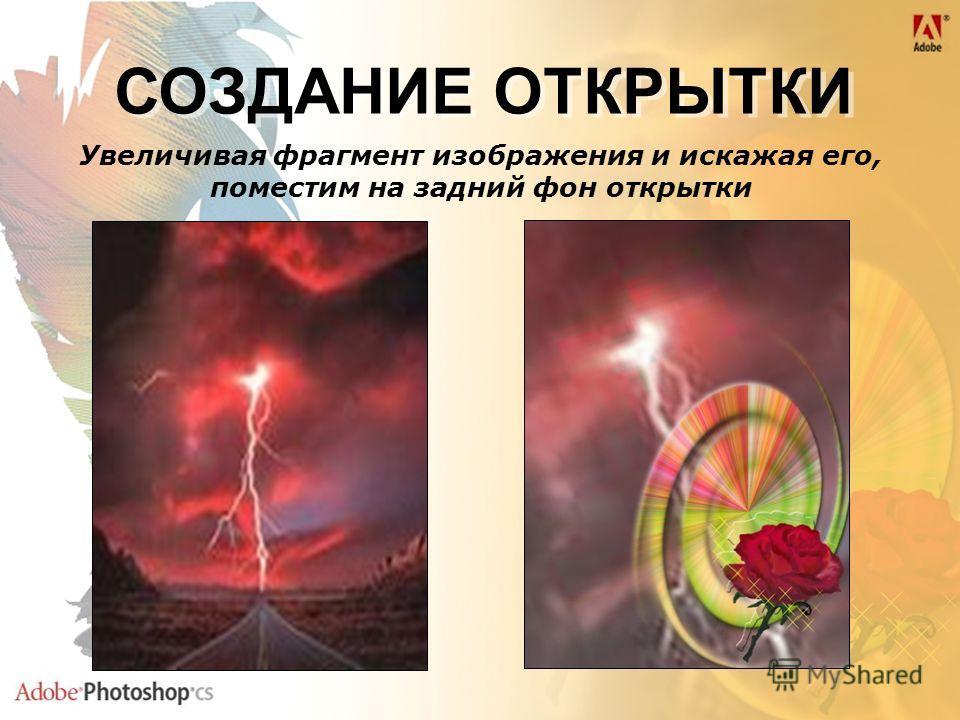 Увеличивая фрагмент изображения и искажая его, поместим на задний фон открытки СОЗДАНИЕ ОТКРЫТКИ