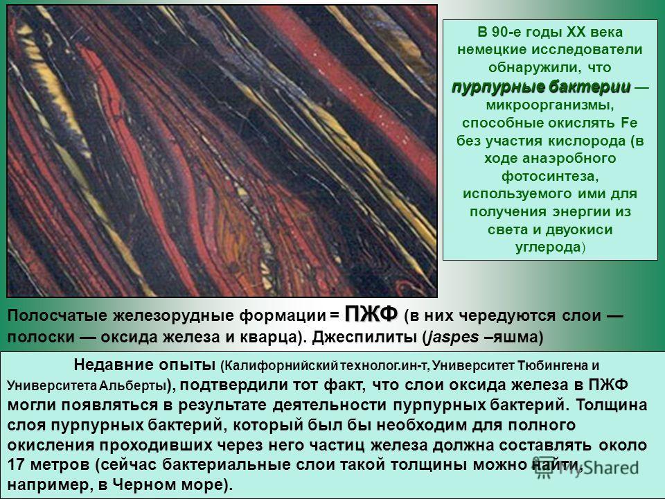 ПЖФ Полосчатые железорудные формации = ПЖФ (в них чередуются слои полоски оксида железа и кварца). Джеспилиты (jaspes –яшма) пурпурные бактерии В 90-е годы ХХ века немецкие исследователи обнаружили, что пурпурные бактерии микроорганизмы, способные ок
