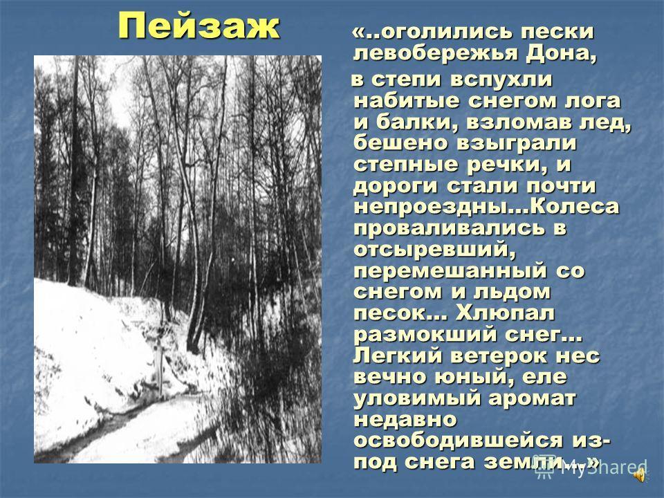 Пейзаж «..оголились пески левобережья Дона, «..оголились пески левобережья Дона, в степи вспухли набитые снегом лога и балки, взломав лед, бешено взыграли степные речки, и дороги стали почти непроездны…Колеса проваливались в отсыревший, перемешанный