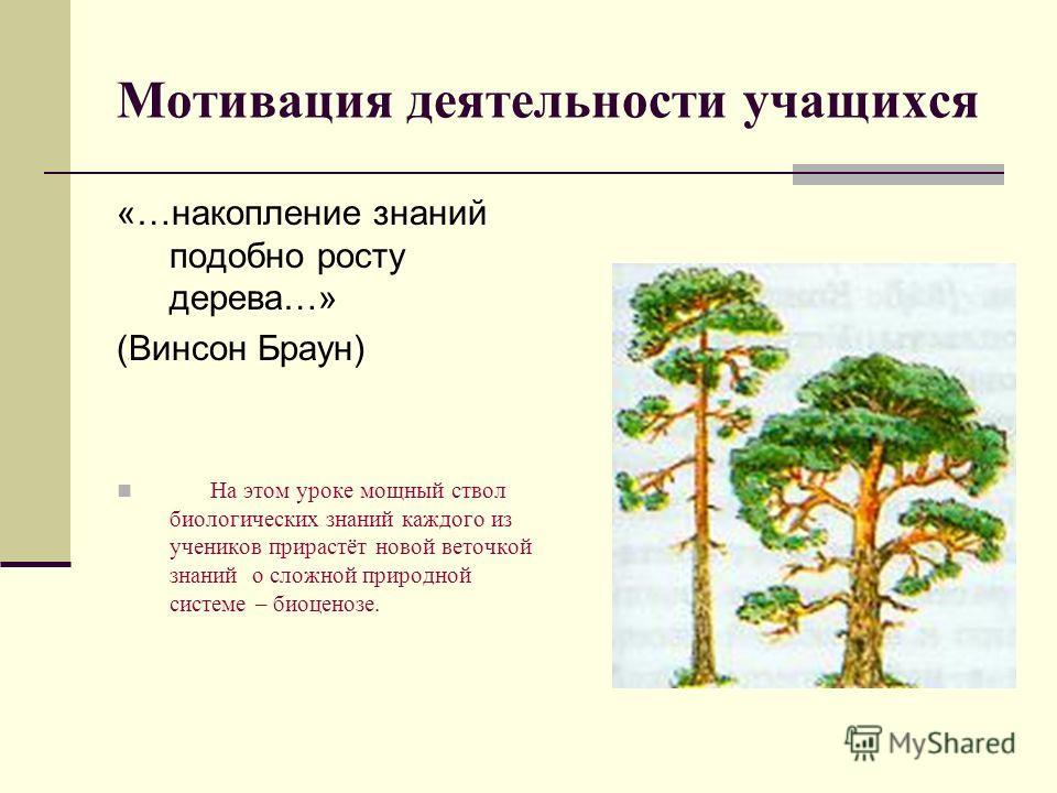 Мотивация деятельности учащихся «…накопление знаний подобно росту дерева…» (Винсон Браун) На этом уроке мощный ствол биологических знаний каждого из учеников прирастёт новой веточкой знаний о сложной природной системе – биоценозе.