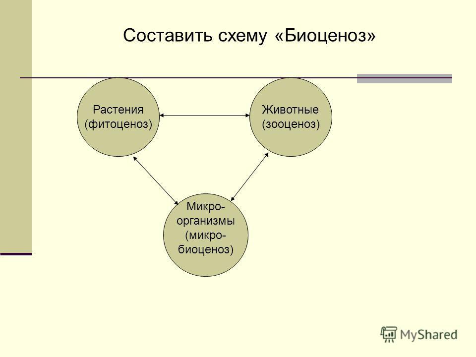 Составить схему «Биоценоз» Растения (фитоценоз) Животные (зооценоз) Микро- организмы (микро- биоценоз)