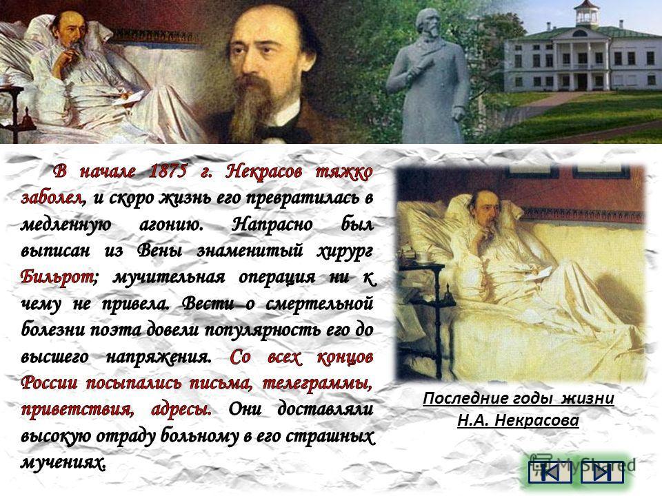 Некрасов Николай Алексеевич. «Петербургские углы»