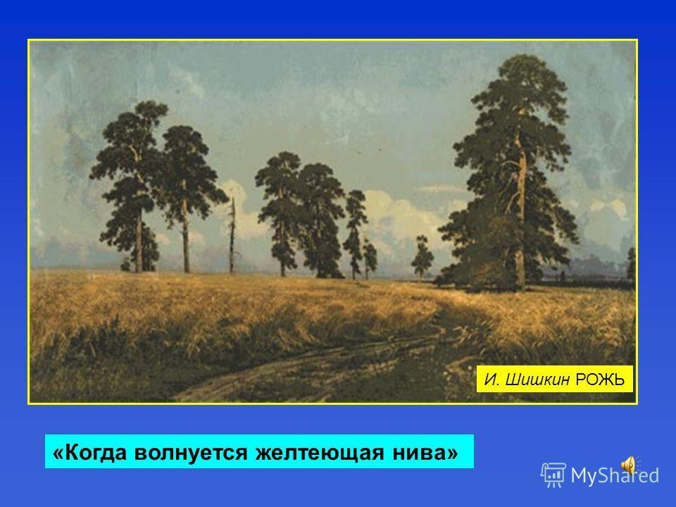 «Когда волнуется желтеющая нива» И. Шишкин РОЖЬ