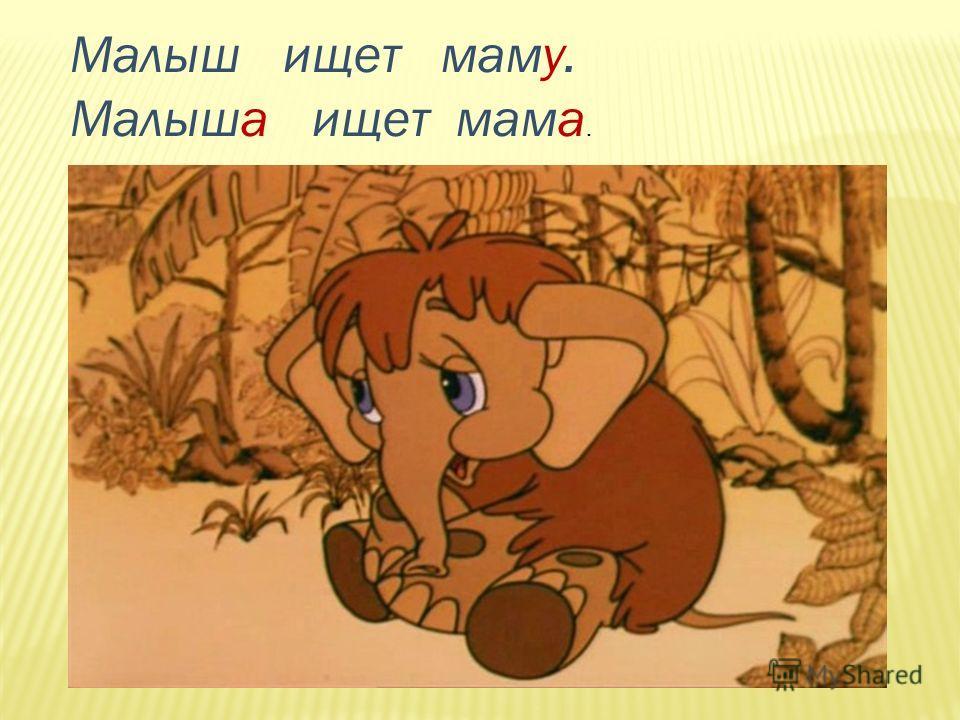 Малыш ищет маму. Малыша ищет мама.