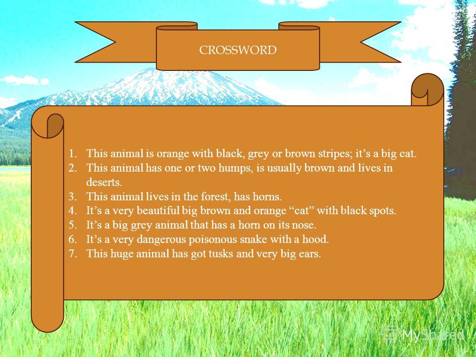 1.This animal is orange with black, grey or brown stripes; its a big cat. 2.This animal has one or two humps, is usually brown and lives in deserts. 3.This animal lives in the forest, has horns. 4.Its a very beautiful big brown and orange cat with bl