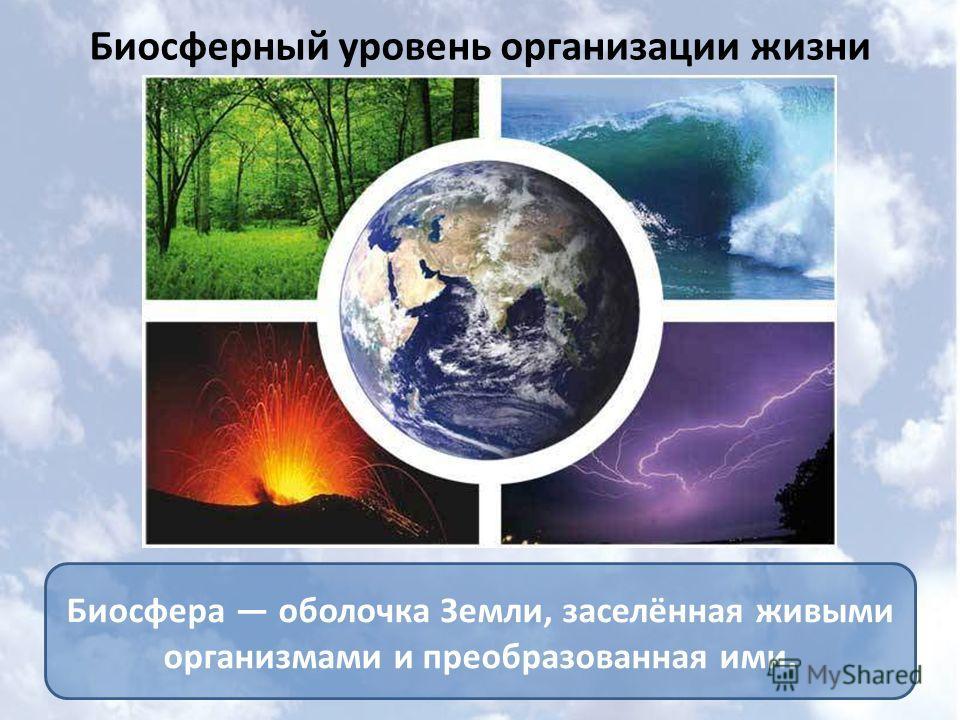 Биосферный уровень организации жизни Биосфера оболочка Земли, заселённая живыми организмами и преобразованная ими.