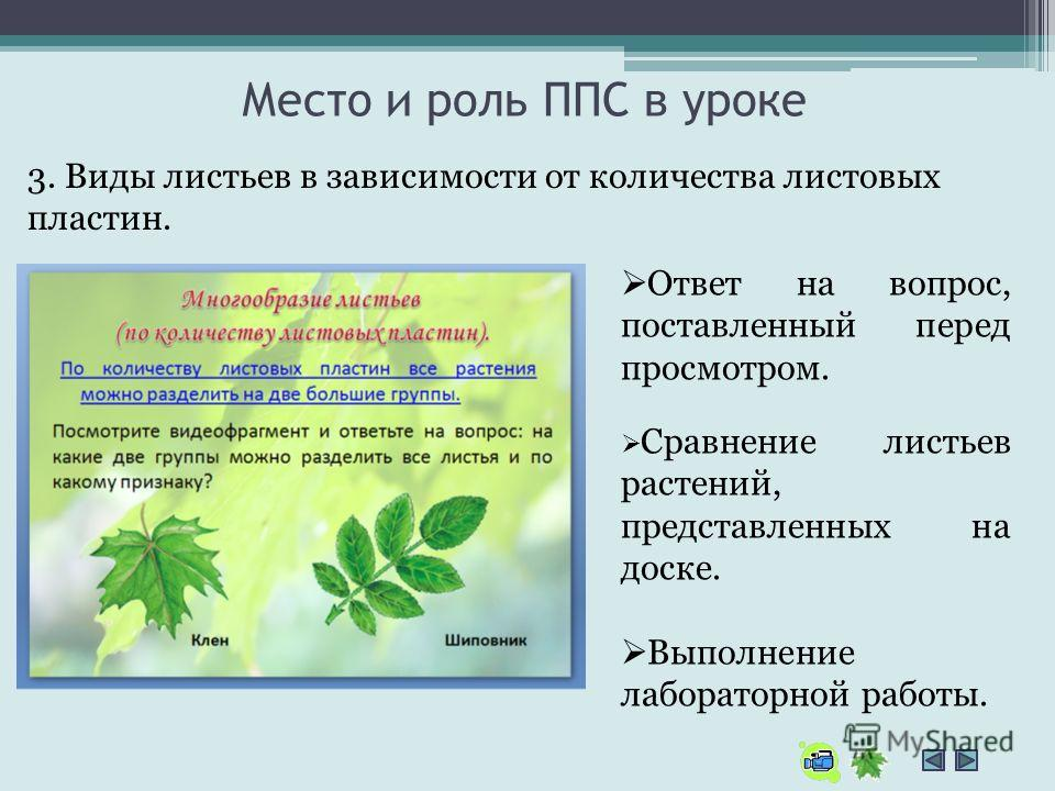 Место и роль ППС в уроке 3. Виды листьев в зависимости от количества листовых пластин. Ответ на вопрос, поставленный перед просмотром. Сравнение листьев растений, представленных на доске. Выполнение лабораторной работы.