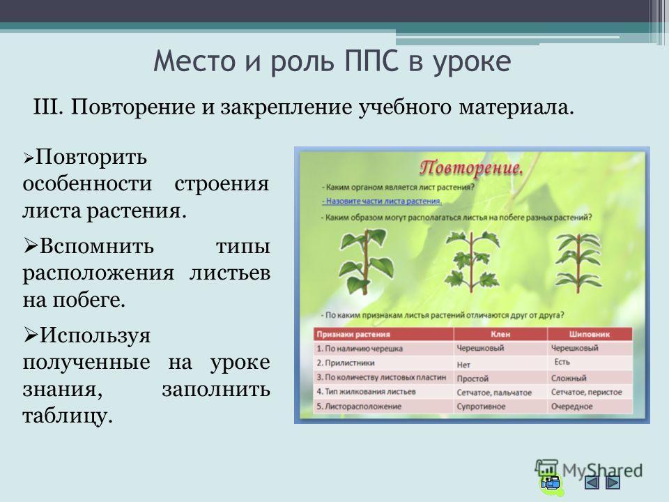 Место и роль ППС в уроке III. Повторение и закрепление учебного материала. Повторить особенности строения листа растения. Вспомнить типы расположения листьев на побеге. Используя полученные на уроке знания, заполнить таблицу.