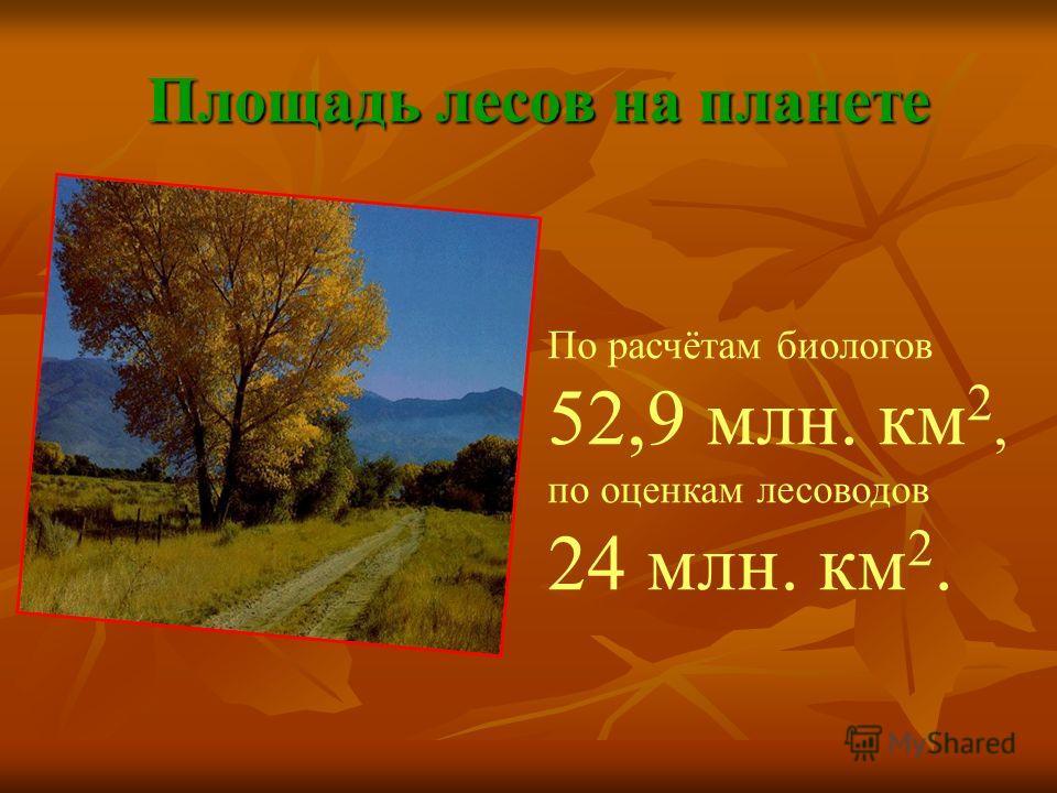 Площадь лесов на планете По расчётам биологов 52,9 млн. км 2, по оценкам лесоводов 24 млн. км 2.