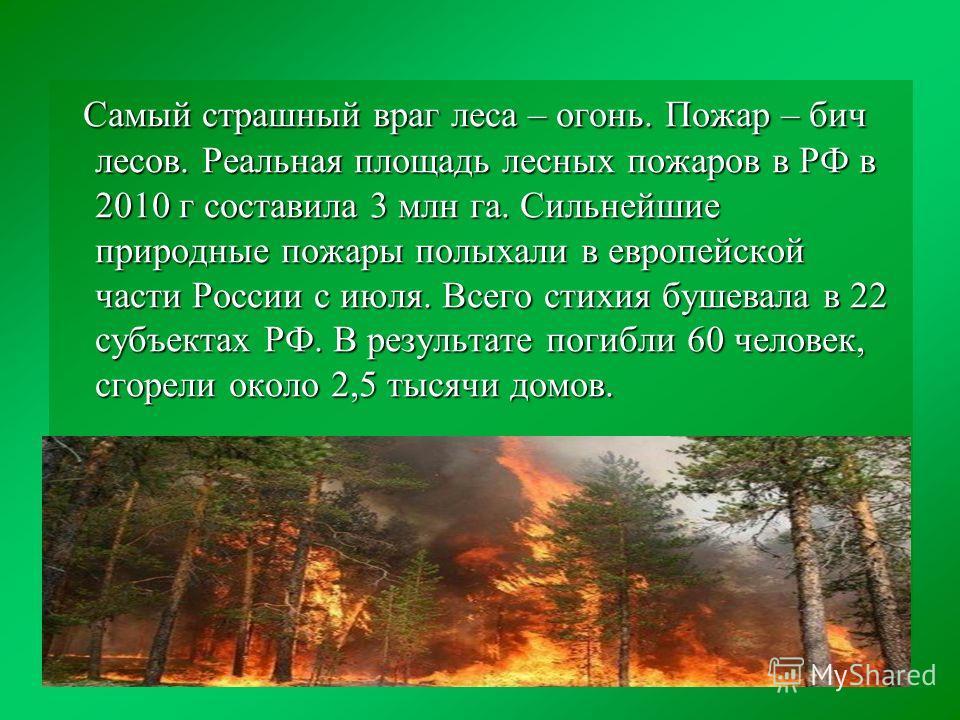 Самый страшный враг леса – огонь. Пожар – бич лесов. Реальная площадь лесных пожаров в РФ в 2010 г составила 3 млн га. Сильнейшие природные пожары полыхали в европейской части России с июля. Всего стихия бушевала в 22 субъектах РФ. В результате погиб